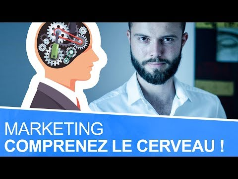 Neuromarketing : les 3 parties du cerveau triunique pour mieux vendre 🐧