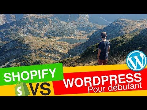 Shopify OU wordpress ? Que choisir pour sa BOUTIQUE en ligne en ecommerce et dropshipping