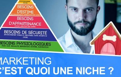 Des exemples de marché de niche avec le formateur de marketing Frank Houbre qui explique qu'est ce qu'une niche.