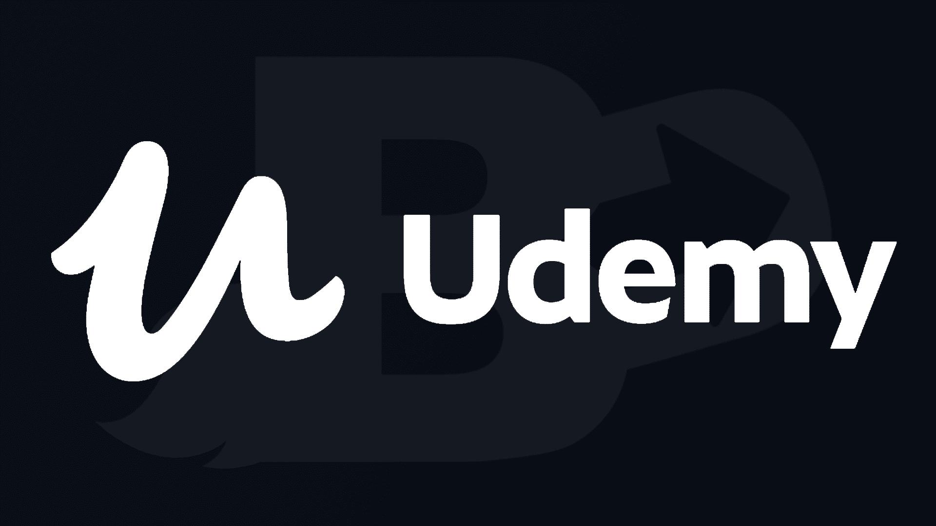 Formation Udemy en dropshipping, seo, snapchat, instagram et publicité facebook.