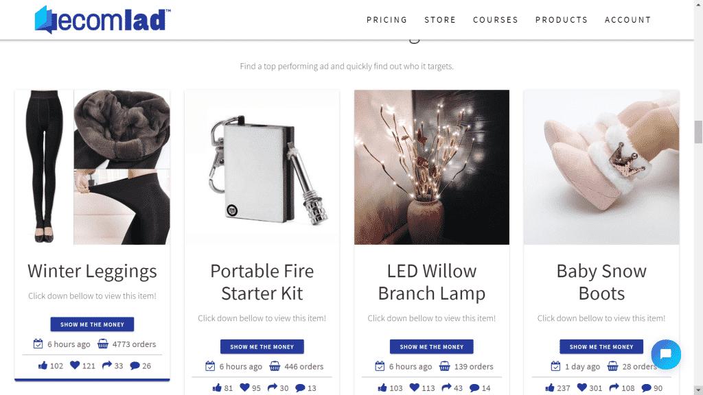 Capture d'écran du site ecomLad