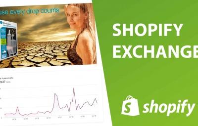 Un exemple de boutique en ligne de dropshipping à acheter ou vender en ligne sur la plateforme shopify exchange.