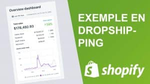 Exemple d'une boutique de dropshipping avec des résultats et explication de la stratégie sur fond vert avec le logo de shopify.