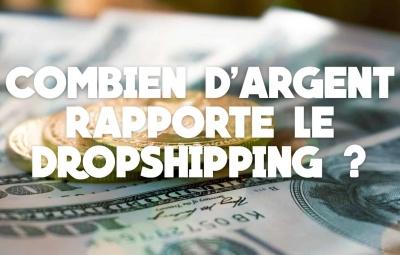 Combien gagne t-on vraiment en dropshipping ?