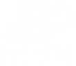 Logo de la formation en dropshipping business dynamite